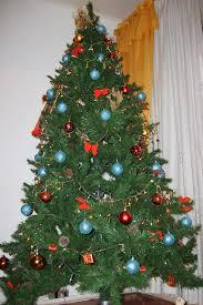 Karácsonyfa rendelés az interneten